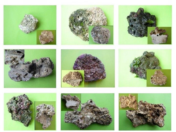 rocks_examples