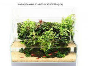 DOOA Neo Glass TERRA H36 / Аквариум Неогласс Терра высота 36 см