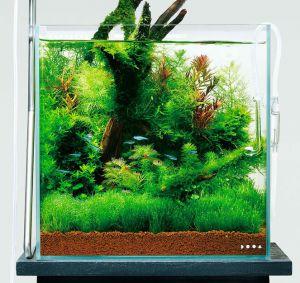 DOOA Glass Cover for System Aqua 30 (W282xH195mm) / Покровное стекло для System Aqua 30