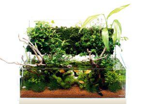 DOOA Wabi kusa mat (6pcs) / Маты для крепления растений - 6 штук